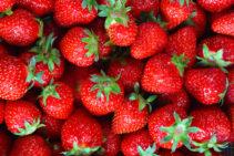 erdbeeren-bärlifood